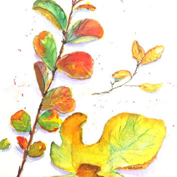 Leaves, Original Watercolor Painting, 8x10, Fall, Autumn, Colorful leaves, Leaves on stem, white background, Yellow, Red, Green, Gold