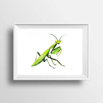 Mantis watercolor painting insect boy kid nursery decor green print simple wall art from original artwork 4x6 5x7 8x10 11x14 16x20 24x36 art