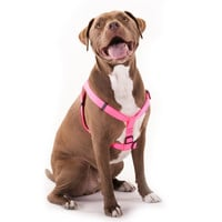 15in -25in Step In Harness Pink,  Lrg 40 - 120 lbs Dog By Majestic Pet Products