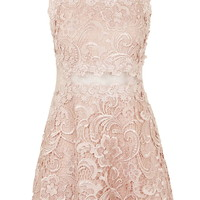 Structured Lace Skater Dress - New In This Week - New In