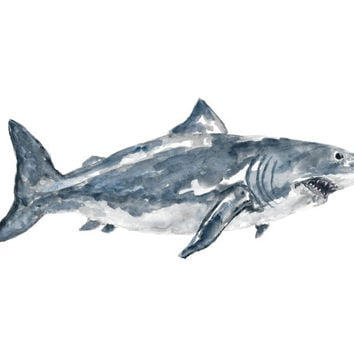 Shark, shark painting, shark art, beach art, watercolor shark, great white shark, shark week, ocean animal painting, watercolor animal, 10X8