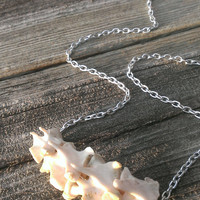 Bone Necklace - Real animal Bone jewelry - Ladies Vertebrae Necklace - Spine Jewelry - Shamans necklace - Wiccan Pagan Tribal Necklace