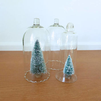 Three tall glass cloches, display domes, bell jars