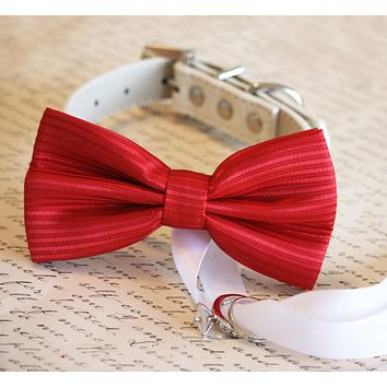 Red Dog Bow Tie ring bearer, Red Wedding, Proposal idea