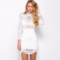 White Crochet Lace Funnel Collar Long Sleeve Bodycon Mini Dress
