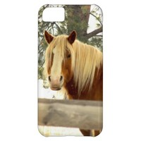 Horse iPhone 5/5S/5C Case