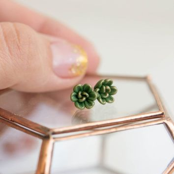 Succulents earrings in green and gold color