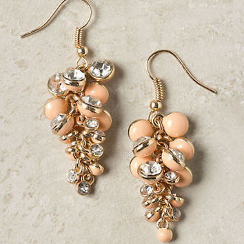 Clustered Curves Earrings