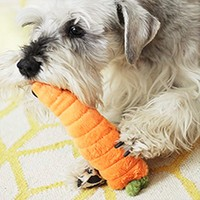 Plush Carrot Toy
