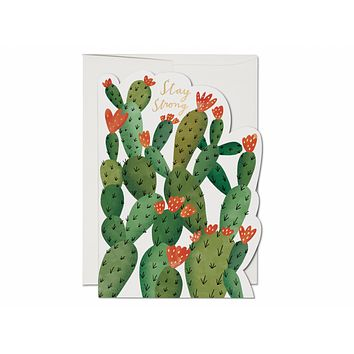 RED CAP CARDS STAY STRONG CACTUS CARD