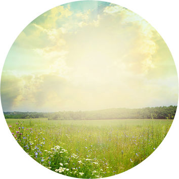 Field of Dreams Circle Wall Decal
