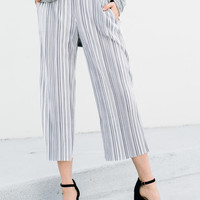 Micro Pleat Stripe Pants