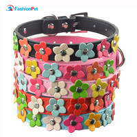 Floral Leather Puppy Cat or Dog Collar