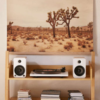 Catherine McDonald For DENY Joshua Tree Art Print - Urban Outfitters