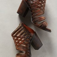 Freebird by Steven Wing Shooties Cognac