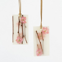 Pressed Flower Sachets, Cherry Blossom