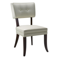 JARED DINING CHAIR SET OF 2