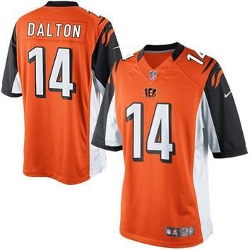 Men's Cleveland Browns Joe Haden Nike Brown Vapor Untouchable Color Rush Limited Player Jersey