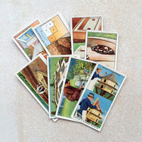 Garden Hints cigarette cards, 8 cards as shown. Vintage collectable cards.