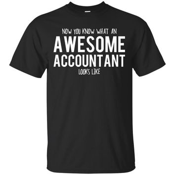 Accountant Shirt, Accountant Gifts, Accountant, Awesome Accountant, Gifts For Accountant, Accountant Tshirt, Funny Gift For Accountant