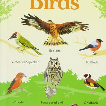 199 Birds (199 Pictures) Board book