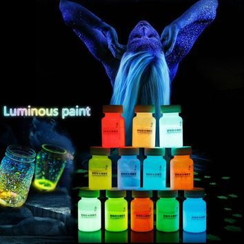 20g 12 Color DIY Graffiti Paint Luminous Acrylic Glow in the Dark Pigment Party Walls