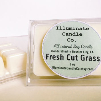Fresh Cut Grass Soy Wax Melt|Wax Tarts| Handmade| Soy Wax| Gifts for her| scented