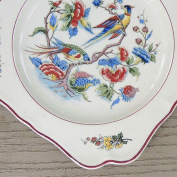 Villeroy and Boch Rouen Scalloped Square Salad Plate, V. & B.M. Replacement China, Birds of Paradise, 1570, Saar Basin, Very Rare Pattern