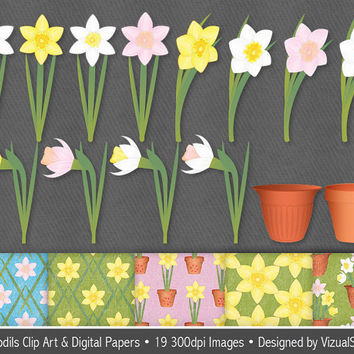 Daffodil Clip Art and Digital Paper Bundle, digital daffodils clipart, spring flowers and flower pots, spring craft images, Buy 2 Get 1 Free