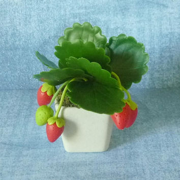 "Faux strawberry pot 2 3/4"" Dollhouse miniature/ fruit tree pot/ Miniature clay tree/ miniature plants/ Dollhouse plants/ Miniatures"