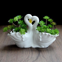 White Ceramic Cactus Succulent Planter Pot Container Gardens,Swan Lover