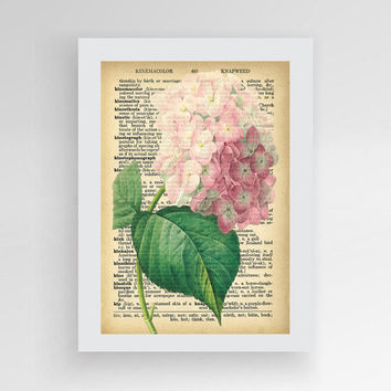 Dictionary flower print Vintage flower dictionary  Pink Hydrangea Vintage Dictionary Art Print Beautiful Antique Flower Spring Botanical Art