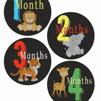 Chalkboard safari stickers- safari monthly, baby belly safari, bodysuit sticker, baby chalkboard, baby belly stickers, chalkboard monthly
