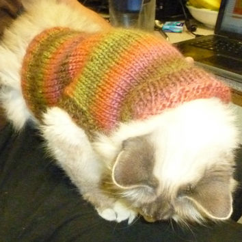 Hand knitted cat or small dog coat, sweater, jumper, jacket - pet, animal, sphynx, chihuahua,