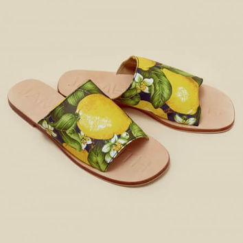 Off Duty Limon Slide