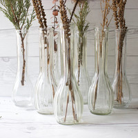 Vintage Set of 7 Clear Glass Bud Vases | Instant Collection | Wedding Vases & Centerpieces