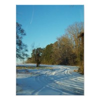 Rural Snowy Path Scene Poster