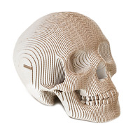 I liked this design on #Fab. Vince Human Skull SE White