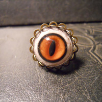 Double Edge Red Fox Taxidermy Glass Eye Ring