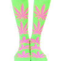 PLANTLIFE GLOW IN THE DARK GREEN SOCKS