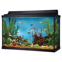 Top Fin 29 Gallon Hooded Aquarium