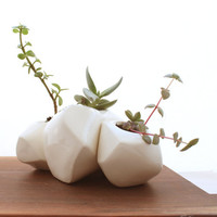 Succulent Rock Trio Planters in White