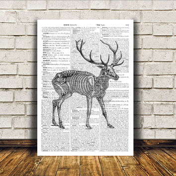Anatomy of deer poster Medical print Macabre art Gothic decor RTA269