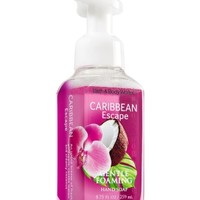 Gentle Foaming Hand Soap Caribbean Escape