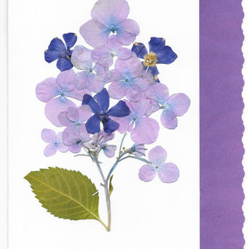 Real  Flower Greeting Card, Birthday Card, Thank You Card, Note Card, Purple Hydrangea, Blank folded card, Anniversary card