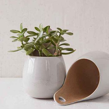 Magical Thinking Herb Pod Planter- Neutral One