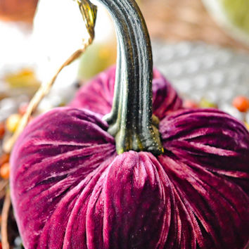 1 Medium Bordeaux Silk Velvet Pumpkin, Fall Decor, Table Centerpiece, Homemade Rustic Decoration