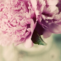 Peonies photograph- pink , mint,  flower cream, romantic, shabby chic, pastel,  floral, nursery, fine art photograph,