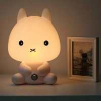Cute Cartoon Baby Rabbit Night Light Lamp from 1Point99.com