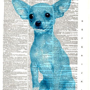 Chihuahua Dog - Teal - Vintage Dictionary Art Print - Page Size 8.5x11